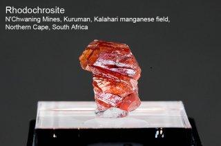 ロードクロサイト 結晶 南アフリカ産|Rhodochrosite|N'Chwaning Mines, Northern Cape, South Africa|菱マンガン鉱|