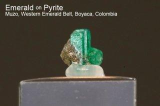 エメラルド on パイライト 結晶石 コロンビア産|Muzo, Western Emerald Belt, Boyaca, Colombia|緑柱石|Emerald|2753A|
