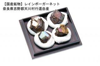 【国産】灰鉄石榴石 結晶石|4個入り|奈良県吉野郡天川村行還岳産|レインボーガーネット|Rainbow Garnet|クーポン使用不可|