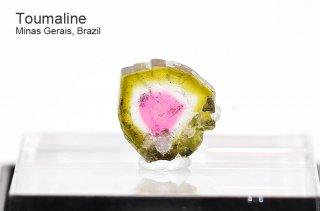 トルマリン スライス ブラジル産|ウォーターメロン|リシア電気石|Murta, Minas Gerais, Brazil|Tourmaline|