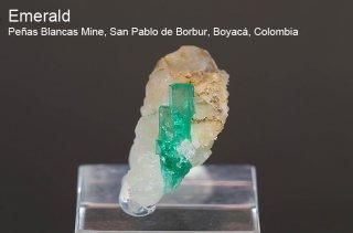 エメラルド 結晶 コロンビア産 緑柱石 Penas Blancas Mine, San Pablo de Borbur, Boyaca Colombia Emerald 2026A 