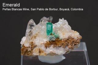 エメラルド 結晶 コロンビア産 緑柱石 Penas Blancas Mine, San Pablo de Borbur, Boyaca Colombia Emerald 2451A 