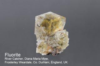 【River Catcher】フローライト with 水晶 結晶石 イングランド産|ダイアナマリア|蛍光|River Catcher, Diana Maria Mine UK|蛍石|Fluorite|