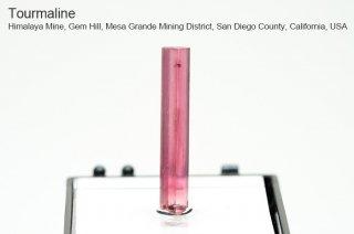 トルマリン 結晶 アメリカ産|電気石|Himalaya Mine, Gem Hill, San Diego County, California, USA|Tourmaline|