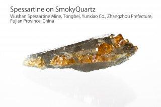 スペッサルティンonスモークークォーツ 結晶 チャイナ産|Spessartine|ガーネット|Wushan Spessartine Mine, Fujian China|満礬柘榴石|