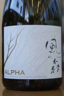 ALPHA風の森 TYPE4