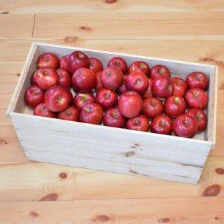 紅玉りんご入り18-20kg(112-128玉)大箱新箱(フタ付き粗仕上げ取手付き)※10月中旬以降のお届けです