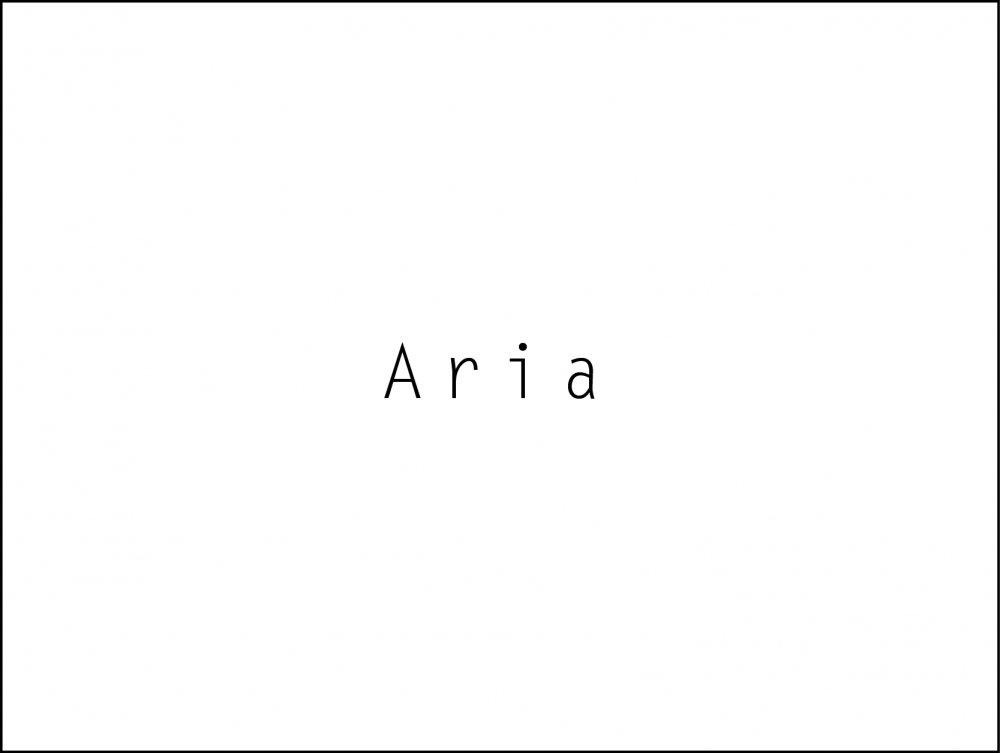 Aria / Single Hop Pale Ale / 500ml 6缶パック