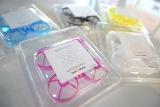 Cockroach Brushuless Frame