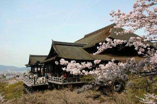 2020/03/21(土)15:00 京都東山プロギングVol.1 + ガイド観光(ケイゾクエナジー)