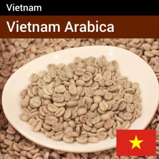 ベトナム アラビカ種