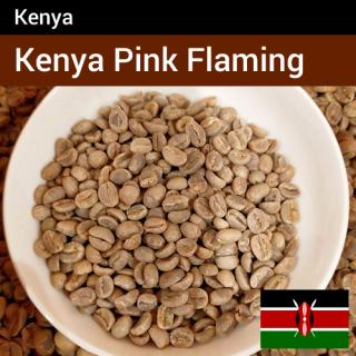 ケニア ピンクフラミンゴW