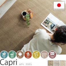毎日の生活に嬉しい機能装備!日本製カーペット 『カプリ ブラウン』