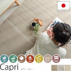 毎日の生活に嬉しい機能装備!日本製カーペット 『カプリ グレー』
