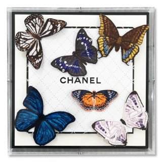 Chanel Butterfly Net , 2019