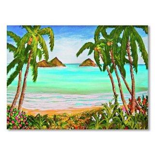 Lanikai Beach Oahu Hawaii #358
