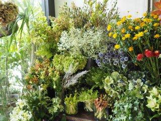 季節の花(ご自宅用)10月 毎週 全4回