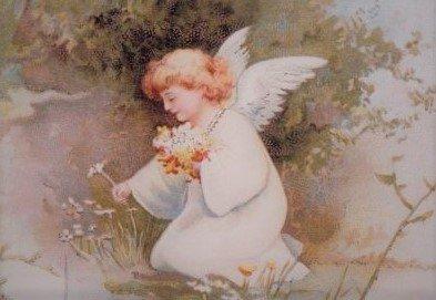 天使からのメッセージ・・*