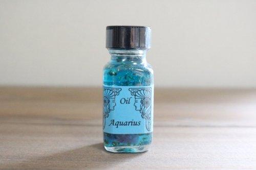 Aquarius 水瓶座 (1 月 20 日〜2 月 18 日)
