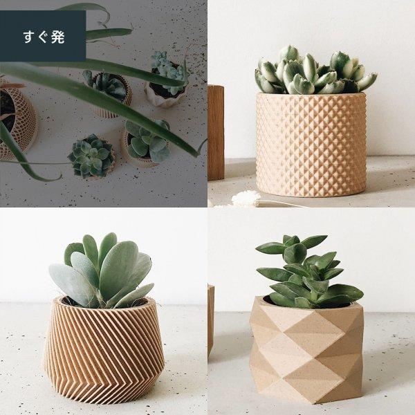Set of 3 [8.5cm] Piko / Oslo / Origami