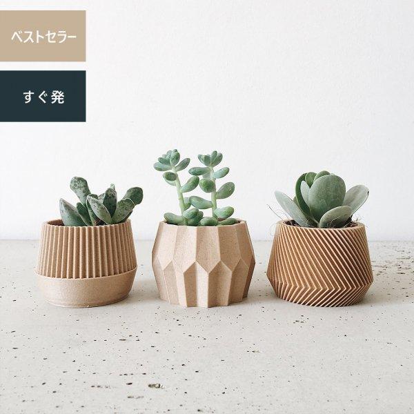 Set of 3 [5.5cm] Kobe / Tokyo / Oslo
