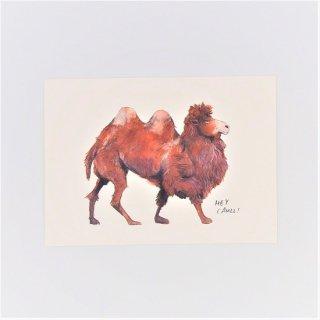 黒山 Hey Camel! Print
