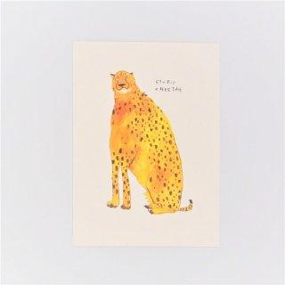 黒山 Stupid Cheetah Print