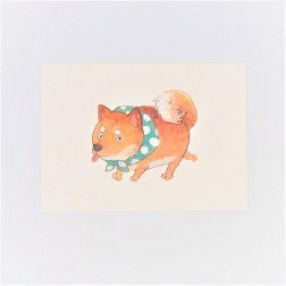 黒山 Fat Shiba Dog Print