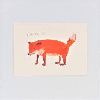 黒山 Black Leg Fox Print