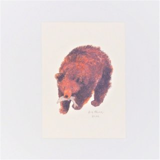 黒山 Big Brown Bear Print