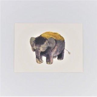 黒山 Mossy Elephant Print