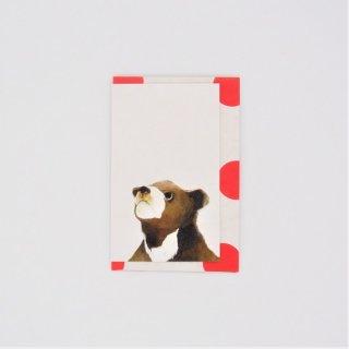 GURIPOPO クマ メッセージカード