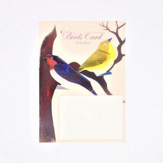 BIRD CARD 野鳥B ツバメ&メジロ