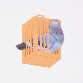 BIRD CARD 河原鳩B