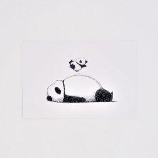 はせがわゆうじ ぱんだもん ポストカード ぼよんパンダ