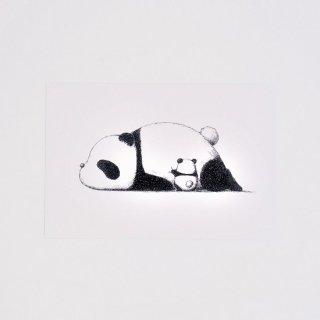 はせがわゆうじ ぱんだもん ポストカード ちょいちょいパンダ