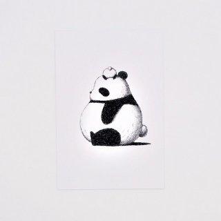 はせがわゆうじ ぱんだもん ポストカード ぼうしパンダ