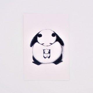 はせがわゆうじ ぱんだもん ポストカード 見つめあいパンダ