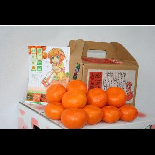【長田農園】<br>勝浦産早生みかん3�