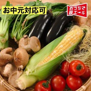 《世羅》食品センターたかはしのせら高原まるごと野菜セット《冷蔵》  ★送料込み★