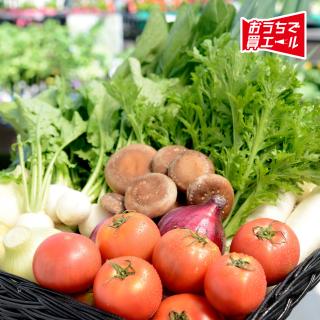 《豊平どんぐり村》季節の野菜セット ★送料込み(一部地域を除く)★