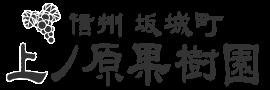 朝摘みぶどうを農園より産直通販|上ノ原果樹園 - 信州坂城町ももちゃんのぶどう
