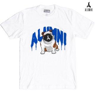 【メール便対応】ALUMNI OLLIE DRIP Tシャツ【WHITE】