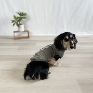 <img class='new_mark_img1' src='https://img.shop-pro.jp/img/new/icons1.gif' style='border:none;display:inline;margin:0px;padding:0px;width:auto;' />【大人気】DOGGO/犬用Tシャツ(アーミーグリーン)/ペアルック可