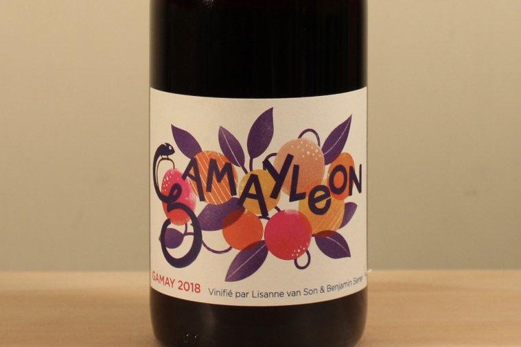 Gamayleon ガメイレオン18