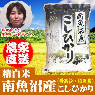 【精白米】南魚沼産コシヒカリ 令和元年 新米(塩沢産)