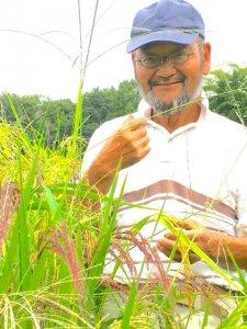 2019年産 コシヒカリ(玄米)5kg