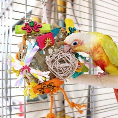 ご縁と幸せを運べるかも♪ 鳥さんのカミカミお花畑 _鳥のおもちゃ