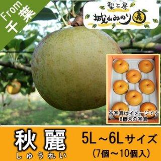 【N-G5 秋麗 5L・6Lサイズ \4000】 城山みのり園 千葉県の梨 おいしい梨ランキング