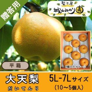 【N-L5 大天梨 5L・6Lサイズ \4000】 千葉県の梨 珍しい梨 新品種